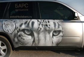 Как выбрать автошколу в Петербурге